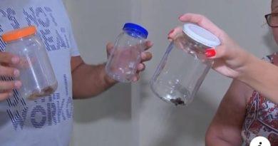 escorpiao-aracatuba