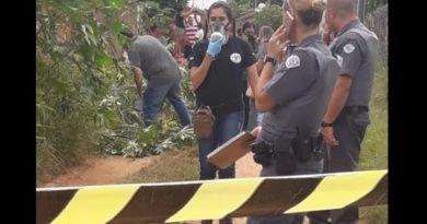 corpo em decomposicao e encontrado em aracatuba 1555958598 7 390x205 - Corpo de mulher encontrado em Araçauba é identificado