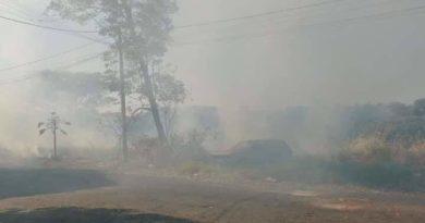 FB IMG 1562133902372 390x205 - Moradores reclamam de queimadas em Birigui
