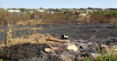 queimada11 2 390x205 - Queimada urbana: Nociva a saúde e ao meio ambiente, multa em Birigui varia de R$ 500 a R$ 3.500