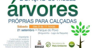 FB IMG 1568998843397 390x205 - Prefeitura e ONG doarão mudas de árvores em Birigui