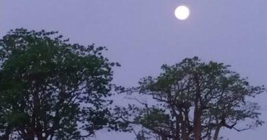 "cropped IMG 20190913 WA0151 390x205 - Lua cheia ilumina ""sexta-feira 13"" no interior paulista"