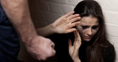 maria da penha 1 390x205 - Homem é preso após agredir mulher e filha em Birigui