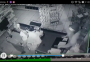 Câmeras de segurança flagram furto em Coroados