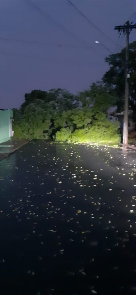 IMG 20201010 WA0000 473x1024 - Temporal derruba árvores e deixa bairros de Birigui no escuro