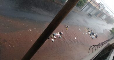 IMG 20201229 WA0005 390x205 - Atraso na coleta de lixo traz transtorno para moradores em Birigui