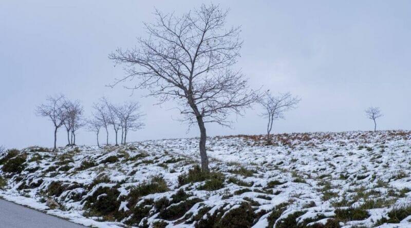 fim de semana de neve e temperaturas baixas ate quando durara o frio 305021 1 1024 800x445 - Depressão Filomena fará termômetros marcarem máxima de -2 °C em Portugal