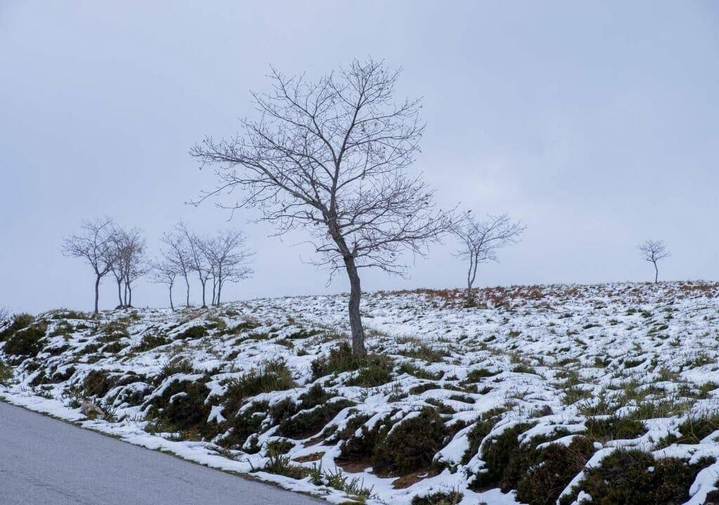 fim de semana de neve e temperaturas baixas ate quando durara o frio 305021 1 1024 - Depressão Filomena fará termômetros marcarem máxima de -2 °C em Portugal